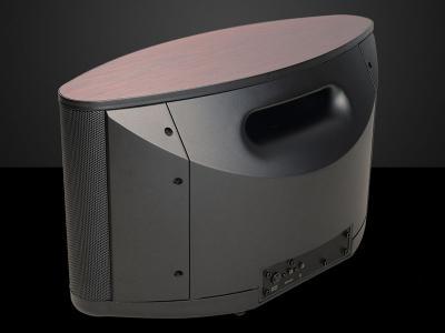 Bryston BryFi Wireless Portable All-in-One Speaker - Includes Battery (BW-1)