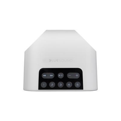Bluesound Portable Wireless Multi-Room Music Streaming Speaker - Pulse Flex 2i White